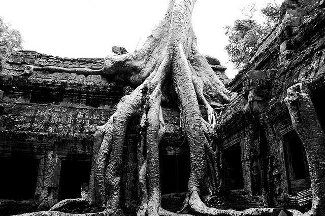 Ta Prohm Cambodia's Temple - Atlas Obscura Photography Blog