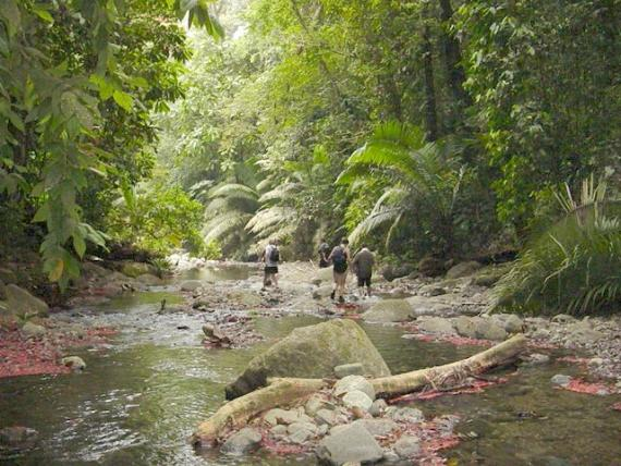 Darien Gap - El Choco Columbia - Atlas Obscura Blog