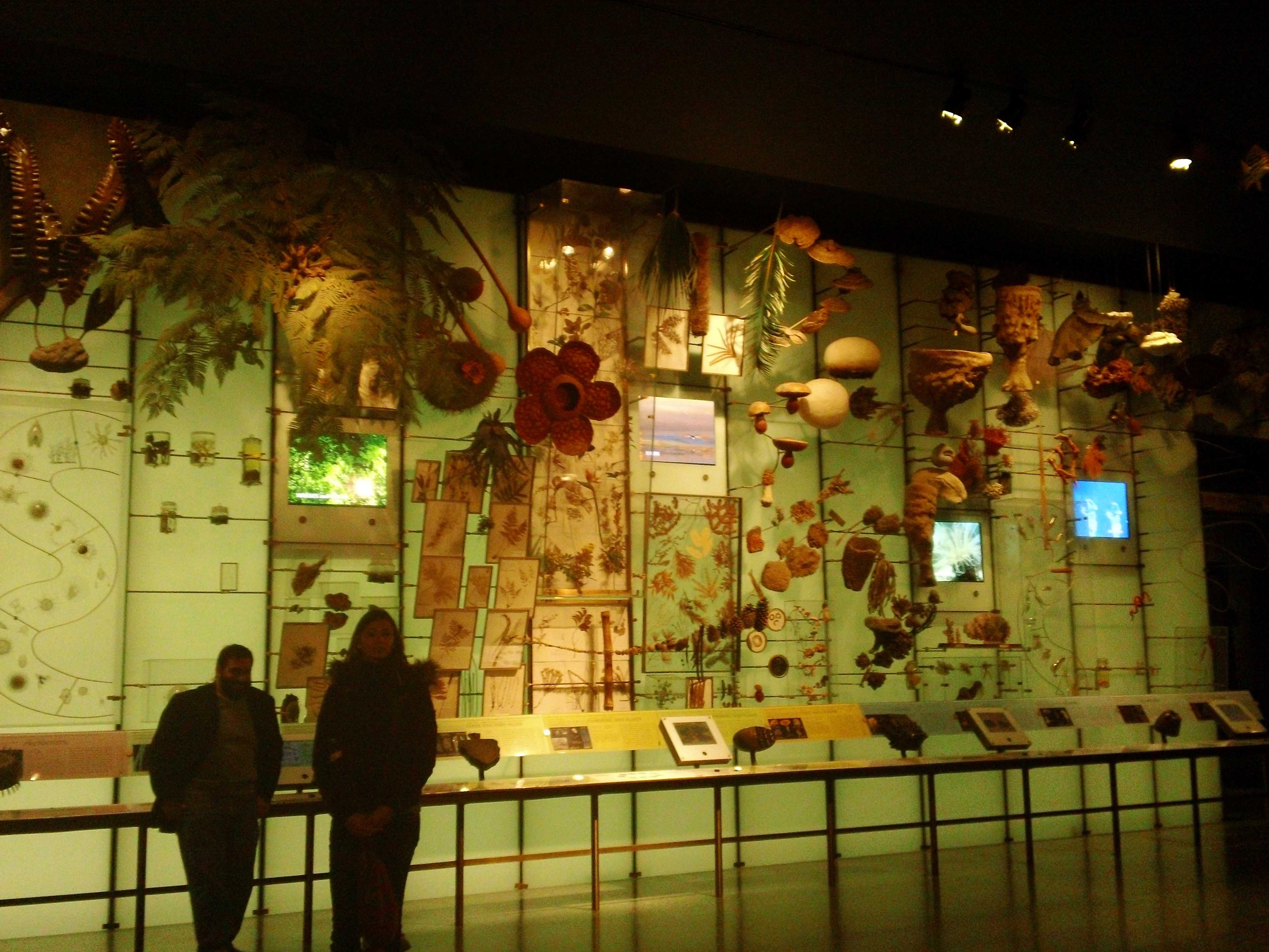 American Museum of Natural History - Atlas Obscura Visits - Annetta & Sarah