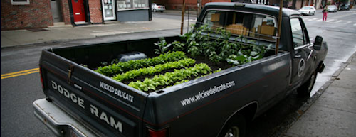 The Truck Farm, planted in a 1986 Dodge pickup.