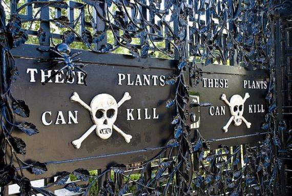 Alnwick Poison Gardens - Atlas Obscura