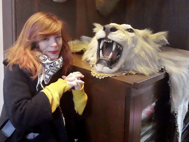 Big Cat Taxidermy - Lion Throw Rug - Sarah Brumble - Atlas Obscura
