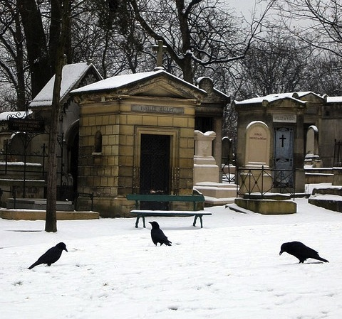 Ravens in Cemetery Surrounded by Mausoleums - Atlas Obscura Blog