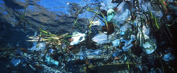 Great Pacific Garbage Patch - Northern Trash Gyre - Size of Texas
