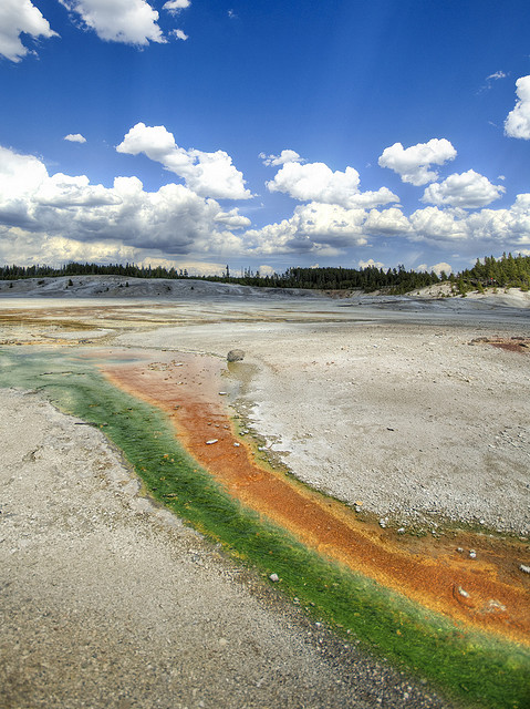 Atlas Obscura Blog - Yellowstone Park Thermal Pools